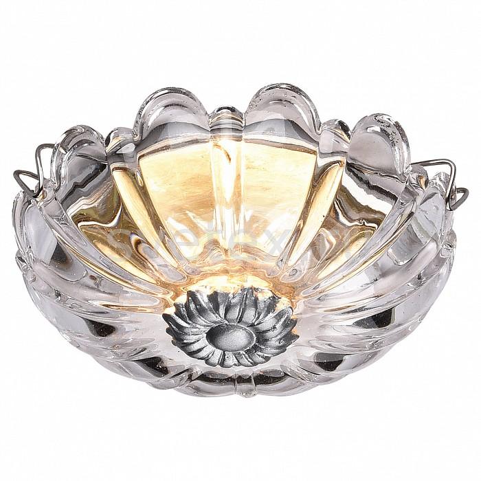 Фото Встраиваемый светильник Favourite Conti 1556-1C