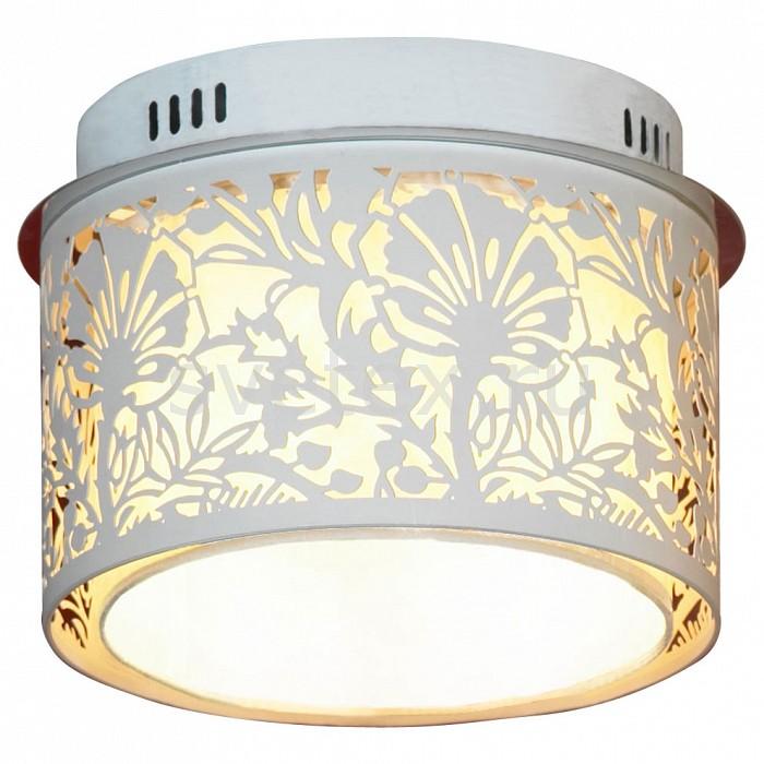 Фото Накладной светильник Lussole Vetere LSF-2307-04