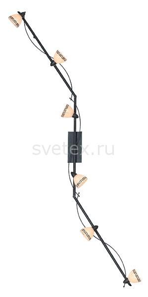 Спот GloboСпоты<br>Артикул - GB_5684-6,Бренд - Globo (Австрия),Коллекция - Roma,Гарантия, месяцы - 24,Длина, мм - 1720,Размер упаковки, мм - 665x170x165,Тип лампы - галогеновая,Общее кол-во ламп - 6,Напряжение питания лампы, В - 220,Максимальная мощность лампы, Вт - 40,Цвет лампы - белый теплый,Лампы в комплекте - галогеновые G9,Цвет плафонов и подвесок - бежевый с коричневым орнаментом,Тип поверхности плафонов - матовый,Материал плафонов и подвесок - стекло,Цвет арматуры - под ржавчину,Тип поверхности арматуры - матовый,Материал арматуры - металл,Количество плафонов - 6,Возможность подлючения диммера - можно,Форма и тип колбы - пальчиковая,Тип цоколя лампы - G9,Цветовая температура, K - 2800 - 3200 K,Экономичнее лампы накаливания - на 50%,Класс электробезопасности - I,Общая мощность, Вт - 240,Степень пылевлагозащиты, IP - 20,Диапазон рабочих температур - комнатная температура,Дополнительные параметры - поворотный светильник<br>