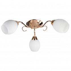 Потолочная люстра TopLightНе более 4 ламп<br>Артикул - TPL_TL3520X-03FG,Бренд - TopLight (Россия),Коллекция - Kristin,Гарантия, месяцы - 24,Высота, мм - 190,Диаметр, мм - 500,Размер упаковки, мм - 220x160x370,Тип лампы - компактная люминесцентная [КЛЛ] ИЛИнакаливания ИЛИсветодиодная [LED],Общее кол-во ламп - 3,Напряжение питания лампы, В - 220,Максимальная мощность лампы, Вт - 60,Лампы в комплекте - отсутствуют,Цвет плафонов и подвесок - белый полосатый,Тип поверхности плафонов - матовый, рельефный,Материал плафонов и подвесок - стекло,Цвет арматуры - золото,Тип поверхности арматуры - глянцевый,Материал арматуры - металл,Возможность подлючения диммера - можно, если установить лампу накаливания,Тип цоколя лампы - E14,Класс электробезопасности - I,Общая мощность, Вт - 180,Степень пылевлагозащиты, IP - 20,Диапазон рабочих температур - комнатная температура,Дополнительные параметры - способ крепления светильника к потолку - на монтажной пластине<br>