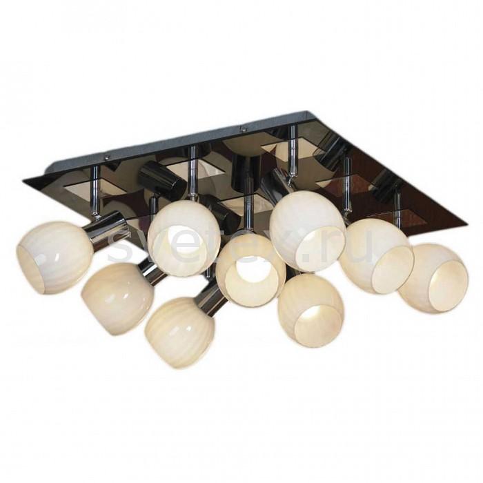 Фото Накладной светильник Lussole Senigallia LSX-5507-09