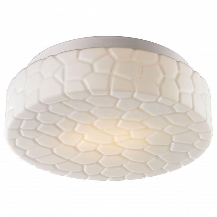 Фото Накладной светильник Arte Lamp Aqua A5330PL-2WH