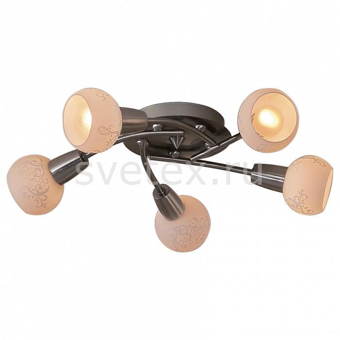 Потолочная люстра CitiluxЛюстры<br>Артикул - CL520151,Бренд - Citilux (Дания),Коллекция - Соната,Гарантия, месяцы - 24,Время изготовления, дней - 1,Высота, мм - 170,Диаметр, мм - 560,Размер упаковки, мм - 400x400x120,Тип лампы - компактная люминесцентная [КЛЛ] ИЛИнакаливания ИЛИсветодиодная [LED],Общее кол-во ламп - 5,Напряжение питания лампы, В - 220,Максимальная мощность лампы, Вт - 60,Лампы в комплекте - отсутствуют,Цвет плафонов и подвесок - белый с рисунком,Тип поверхности плафонов - матовый,Материал плафонов и подвесок - стекло,Цвет арматуры - хром,Тип поверхности арматуры - матовый,Материал арматуры - металл,Количество плафонов - 5,Возможность подлючения диммера - можно, если установить лампу накаливания,Тип цоколя лампы - E14,Класс электробезопасности - I,Общая мощность, Вт - 300,Степень пылевлагозащиты, IP - 20,Диапазон рабочих температур - комнатная температура<br>