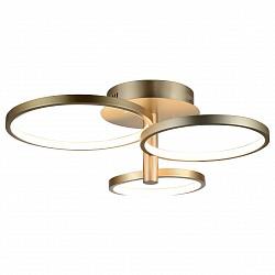 Люстра на штанге ST-LuceПолимерные плафоны<br>Артикул - SL869.202.03,Бренд - ST-Luce (Китай),Коллекция - SL869,Гарантия, месяцы - 24,Время изготовления, дней - 1,Высота, мм - 250,Размер упаковки, мм - 690х570х270,Тип лампы - светодиодная [LED],Общее кол-во ламп - 3,Напряжение питания лампы, В - 220,Максимальная мощность лампы, Вт - 19,Лампы в комплекте - светодиодные [LED],Цвет плафонов и подвесок - белый,Тип поверхности плафонов - матовый,Материал плафонов и подвесок - полимер,Цвет арматуры - золото,Тип поверхности арматуры - матовый,Материал арматуры - металл,Возможность подлючения диммера - нельзя,Класс электробезопасности - I,Общая мощность, Вт - 58,Степень пылевлагозащиты, IP - 20,Диапазон рабочих температур - комнатная температура,Дополнительные параметры - способ крепления светильника к потолку – на монтажной пластине<br>