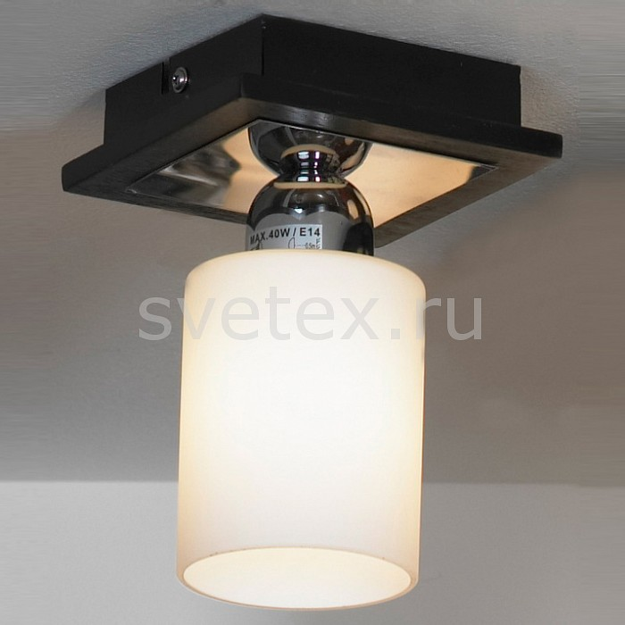 Фото Светильник на штанге Lussole Caprile LSF-6117-01