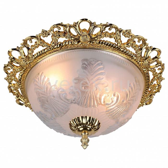 Фото Накладной светильник Arte Lamp Piatti A8002PL-2GO