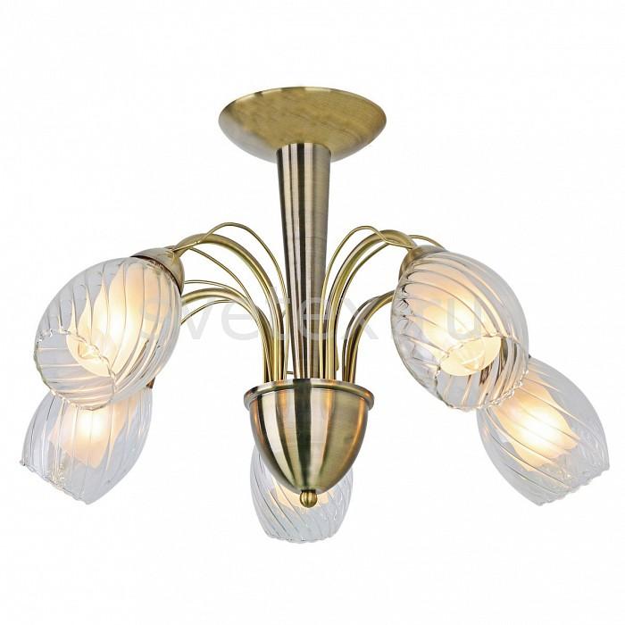 Люстра на штанге Arte LampЛюстры<br>Артикул - AR_A1673PL-5AB,Бренд - Arte Lamp (Италия),Коллекция - Tempesta,Гарантия, месяцы - 24,Время изготовления, дней - 1,Высота, мм - 380,Диаметр, мм - 550,Тип лампы - компактная люминесцентная [КЛЛ] ИЛИнакаливания ИЛИсветодиодная [LED],Общее кол-во ламп - 5,Напряжение питания лампы, В - 220,Максимальная мощность лампы, Вт - 60,Лампы в комплекте - отсутствуют,Цвет плафонов и подвесок - белый, неокрашенный,Тип поверхности плафонов - матовый, прозрачный, рельефный,Материал плафонов и подвесок - стекло,Цвет арматуры - бронза античная,Тип поверхности арматуры - глянцевый,Материал арматуры - металл,Количество плафонов - 5,Возможность подлючения диммера - можно, если установить лампу накаливания,Форма и тип колбы - свеча,Тип цоколя лампы - E14,Класс электробезопасности - I,Общая мощность, Вт - 300,Степень пылевлагозащиты, IP - 20,Диапазон рабочих температур - комнатная температура,Дополнительные параметры - способ крепления светильника к потолку – на монтажной пластине<br>