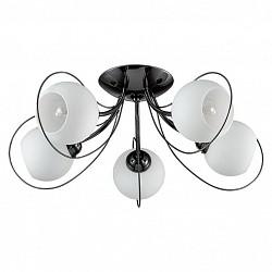 Потолочная люстра Lumion5 или 6 ламп<br>Артикул - LMN_3083_5C,Бренд - Lumion (Италия),Коллекция - Aria,Гарантия, месяцы - 24,Высота, мм - 230,Диаметр, мм - 560,Размер упаковки, мм - 230x330x440,Тип лампы - компактная люминесцентная [КЛЛ] ИЛИнакаливания ИЛИсветодиодная [LED],Общее кол-во ламп - 5,Напряжение питания лампы, В - 220,Максимальная мощность лампы, Вт - 40,Лампы в комплекте - отсутствуют,Цвет плафонов и подвесок - белый,Тип поверхности плафонов - матовый,Материал плафонов и подвесок - стекло,Цвет арматуры - черный,Тип поверхности арматуры - глянцевый,Материал арматуры - металл,Возможность подлючения диммера - можно, если установить лампу накаливания,Тип цоколя лампы - E14,Класс электробезопасности - I,Общая мощность, Вт - 200,Степень пылевлагозащиты, IP - 20,Диапазон рабочих температур - комнатная температура,Дополнительные параметры - способ крепления к потолку - на монтажной пластине<br>