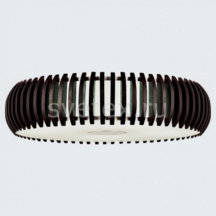 Фото Накладной светильник Favourite Sibua 1715-4C