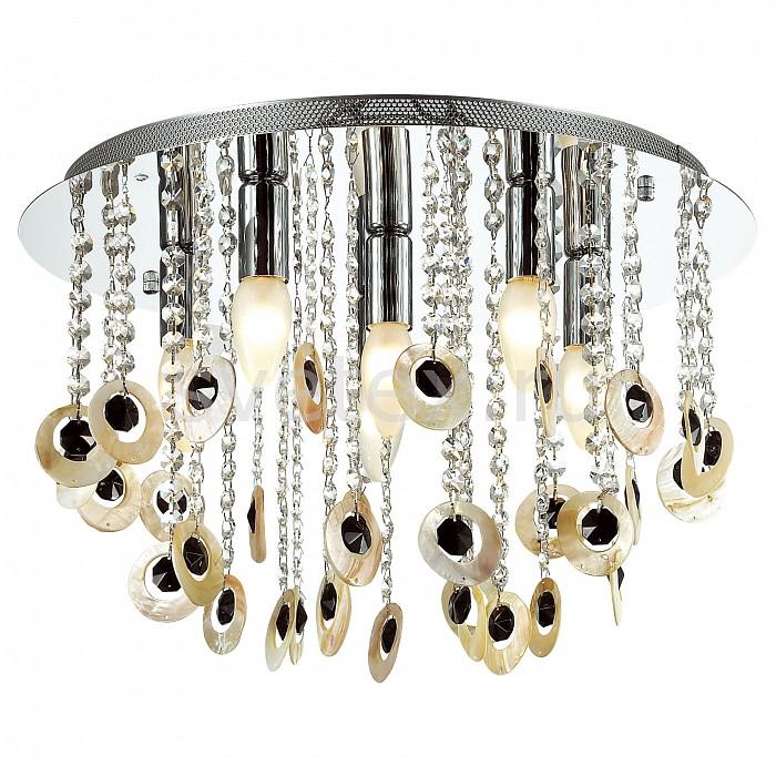 Накладной светильник FavouriteНакладные светильники<br>Артикул - FV_1686-6C,Бренд - Favourite (Германия),Коллекция - Muscheln,Гарантия, месяцы - 24,Высота, мм - 330,Диаметр, мм - 460,Тип лампы - компактная люминесцентная [КЛЛ] ИЛИнакаливания ИЛИсветодиодная [LED],Общее кол-во ламп - 6,Напряжение питания лампы, В - 220,Максимальная мощность лампы, Вт - 40,Лампы в комплекте - отсутствуют,Цвет плафонов и подвесок - неокрашенный, черный,Тип поверхности плафонов - матовый, прозрачный,Материал плафонов и подвесок - ракушка, хрусталь,Цвет арматуры - хром,Тип поверхности арматуры - глянцевый,Материал арматуры - металл,Возможность подлючения диммера - можно, если установить лампу накаливания,Тип цоколя лампы - E14,Класс электробезопасности - I,Общая мощность, Вт - 240,Степень пылевлагозащиты, IP - 20,Диапазон рабочих температур - комнатная температура,Дополнительные параметры - способ крепления светильника к потолку - на монтажной пластине<br>