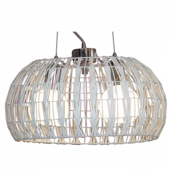 Фото Подвесной светильник Lussole Fenigli LSX-4103-02