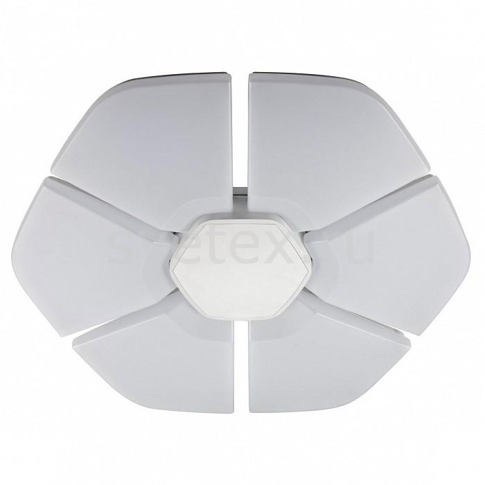 Накладной светильник IDLampКруглые<br>Артикул - ID_305_80PF-LEDWhite,Бренд - IDLamp (Италия),Коллекция - Jasmin,Гарантия, месяцы - 24,Диаметр, мм - 800,Тип лампы - светодиодная [LED],Общее кол-во ламп - 1,Напряжение питания лампы, В - 220,Максимальная мощность лампы, Вт - 108,Цвет лампы - белый,Лампы в комплекте - светодиодная [LED],Цвет плафонов и подвесок - белый,Тип поверхности плафонов - матовый,Материал плафонов и подвесок - полимер,Цвет арматуры - белый,Тип поверхности арматуры - матовый,Материал арматуры - металл,Количество плафонов - 1,Возможность подлючения диммера - нельзя,Цветовая температура, K - 4000 - 4200 K,Экономичнее лампы накаливания - в 10 раз,Класс электробезопасности - I,Степень пылевлагозащиты, IP - 20,Диапазон рабочих температур - комнатная температура,Дополнительные параметры - способ крепления светильника к потолку - на монтажной пластине<br>
