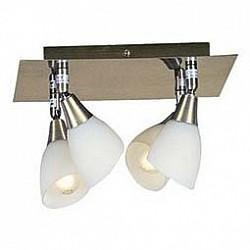 Спот GloboС 4 лампами<br>Артикул - GB_5451-4,Бренд - Globo (Австрия),Коллекция - Frank,Гарантия, месяцы - 24,Время изготовления, дней - 1,Размер упаковки, мм - 125x305x305,Тип лампы - компактная люминесцентная [КЛЛ] ИЛИнакаливания ИЛИсветодиодная [LED],Общее кол-во ламп - 4,Напряжение питания лампы, В - 220,Максимальная мощность лампы, Вт - 40,Лампы в комплекте - отсутствуют,Цвет плафонов и подвесок - опал,Тип поверхности плафонов - матовый,Материал плафонов и подвесок - стекло,Цвет арматуры - латунь античная,Тип поверхности арматуры - глянцевый,Материал арматуры - металл,Возможность подлючения диммера - можно, если установить лампу накаливания,Тип цоколя лампы - E14,Класс электробезопасности - I,Общая мощность, Вт - 160,Степень пылевлагозащиты, IP - 20,Диапазон рабочих температур - комнатная температура,Дополнительные параметры - поворотный светильник<br>