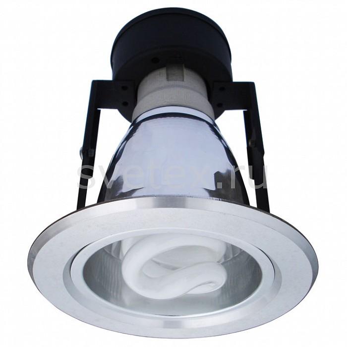 Фото Встраиваемый светильник Arte Lamp Technika A8044PL-1SI