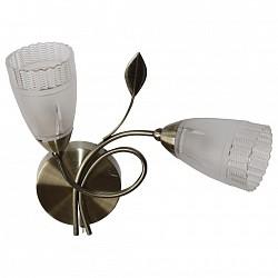 Бра IDLampБолее 1 лампы<br>Артикул - ID_858_2A-oldbronze,Бренд - IDLamp (Италия),Коллекция - 858,Гарантия, месяцы - 24,Высота, мм - 320,Тип лампы - компактная люминесцентная [КЛЛ] ИЛИнакаливания ИЛИсветодиодная [LED],Общее кол-во ламп - 2,Напряжение питания лампы, В - 220,Максимальная мощность лампы, Вт - 60,Лампы в комплекте - отсутствуют,Цвет плафонов и подвесок - неокрашенный,Тип поверхности плафонов - матовый, рельефный,Материал плафонов и подвесок - стекло,Цвет арматуры - старая бронза,Тип поверхности арматуры - глянцевый,Материал арматуры - металл,Возможность подлючения диммера - можно, если установить лампу накаливания,Тип цоколя лампы - E14,Класс электробезопасности - I,Общая мощность, Вт - 120,Степень пылевлагозащиты, IP - 20,Диапазон рабочих температур - комнатная температура,Дополнительные параметры - способ крепления светильника к стене — на монтажной пластине<br>
