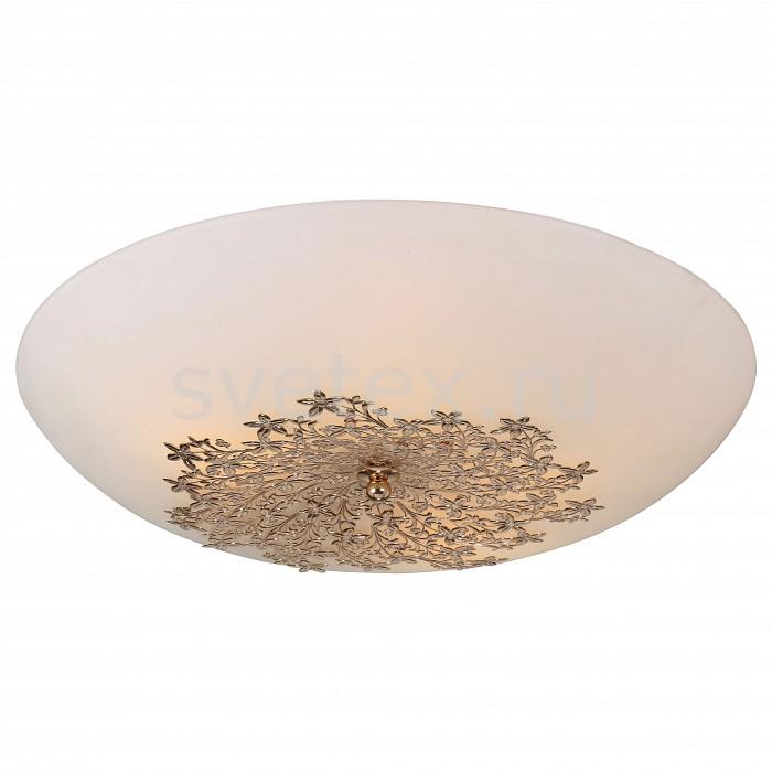 Фото Накладной светильник Arte Lamp Provence A4548PL-5GO