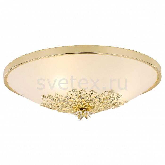 Фото Накладной светильник Arte Lamp Collinetta A9116PL-3GO