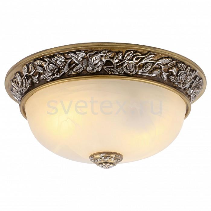 Фото Накладной светильник Arte Lamp Torta A7141PL-2SB