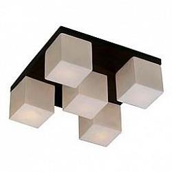 Накладной светильник Odeon LightКвадратные<br>Артикул - OD_2043_5C,Бренд - Odeon Light (Италия),Коллекция - Cubet,Гарантия, месяцы - 24,Высота, мм - 150,Тип лампы - компактная люминесцентная [КЛЛ] ИЛИнакаливания ИЛИсветодиодная [LED],Общее кол-во ламп - 5,Напряжение питания лампы, В - 220,Максимальная мощность лампы, Вт - 40,Лампы в комплекте - отсутствуют,Цвет плафонов и подвесок - белый,Тип поверхности плафонов - матовый,Материал плафонов и подвесок - стекло,Цвет арматуры - венге,Тип поверхности арматуры - глянцевый,Материал арматуры - металл,Возможность подлючения диммера - можно, если установить лампу накаливания,Тип цоколя лампы - E14,Класс электробезопасности - I,Общая мощность, Вт - 200,Степень пылевлагозащиты, IP - 20,Диапазон рабочих температур - комнатная температура<br>