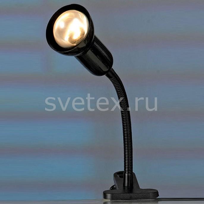 Фото Настольная лампа Lussole E14 220В 40Вт Warshawa LST-4514-01