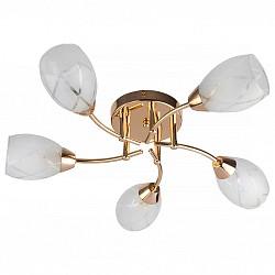 Потолочная люстра TopLight5 или 6 ламп<br>Артикул - TPL_TL7120X-05FG,Бренд - TopLight (Россия),Коллекция - Lucy,Гарантия, месяцы - 24,Высота, мм - 160,Диаметр, мм - 550,Размер упаковки, мм - 200x170x580,Тип лампы - компактная люминесцентная [КЛЛ] ИЛИнакаливания ИЛИсветодиодная [LED],Общее кол-во ламп - 5,Напряжение питания лампы, В - 220,Максимальная мощность лампы, Вт - 40,Лампы в комплекте - отсутствуют,Цвет плафонов и подвесок - белый с неокрашенным рисунком,Тип поверхности плафонов - матовый,Материал плафонов и подвесок - стекло,Цвет арматуры - золото,Тип поверхности арматуры - глянцевый,Материал арматуры - металл,Возможность подлючения диммера - можно, если установить лампу накаливания,Тип цоколя лампы - E14,Класс электробезопасности - I,Общая мощность, Вт - 200,Степень пылевлагозащиты, IP - 20,Диапазон рабочих температур - комнатная температура,Дополнительные параметры - способ крепления светильника к потолку - на монтажной пластине<br>