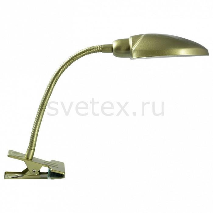 Фото Настольная лампа Lussole E14 220В 40Вт Roma LST-4274-01