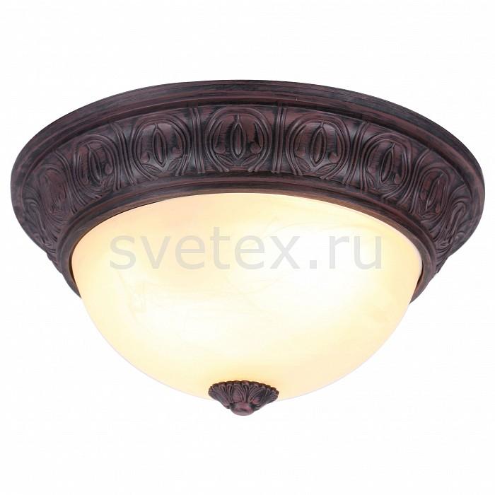 Фото Накладной светильник Arte Lamp Piatti A8007PL-2CK