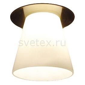 Фото Встраиваемый светильник Arte Lamp Cool Ice 2 A8550PL-1AB
