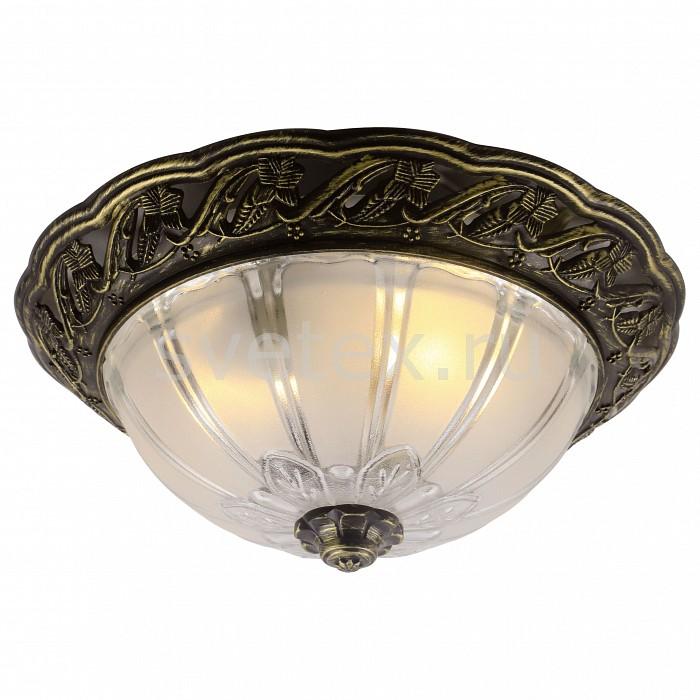 Фото Накладной светильник Arte Lamp Piatti A8003PL-2AB