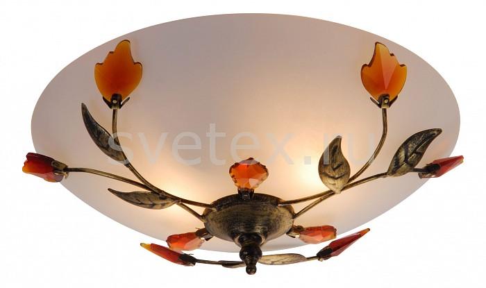 Накладной светильник GloboКруглые<br>Артикул - GB_44133,Бренд - Globo (Австрия),Коллекция - Pandora,Гарантия, месяцы - 24,Время изготовления, дней - 1,Высота, мм - 135,Диаметр, мм - 300,Размер упаковки, мм - 160x335x335,Тип лампы - компактная люминесцентная [КЛЛ] ИЛИнакаливания ИЛИсветодиодная [LED],Общее кол-во ламп - 2,Напряжение питания лампы, В - 220,Максимальная мощность лампы, Вт - 60,Лампы в комплекте - отсутствуют,Цвет плафонов и подвесок - опал, янтарный,Тип поверхности плафонов - сатин,Материал плафонов и подвесок - стекло,Цвет арматуры - бронза,Тип поверхности арматуры - матовый,Материал арматуры - металл,Количество плафонов - 1,Возможность подлючения диммера - можно, если установить лампу накаливания,Тип цоколя лампы - E27,Класс электробезопасности - I,Общая мощность, Вт - 120,Степень пылевлагозащиты, IP - 20,Диапазон рабочих температур - комнатная температура<br>