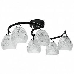 Потолочная люстра IDLamp5 или 6 ламп<br>Артикул - ID_381_6PF-Blackchrome,Бренд - IDLamp (Италия),Коллекция - 381,Время изготовления, дней - 1,Высота, мм - 210,Тип лампы - компактная люминесцентная [КЛЛ] ИЛИнакаливания ИЛИсветодиодная [LED],Общее кол-во ламп - 6,Напряжение питания лампы, В - 220,Максимальная мощность лампы, Вт - 60,Лампы в комплекте - отсутствуют,Цвет плафонов и подвесок - неокрашенный с рисунком,Тип поверхности плафонов - матовый, прозрачный, рельефный,Материал плафонов и подвесок - стекло,Цвет арматуры - хром, черный,Тип поверхности арматуры - глянцевый, матовый,Материал арматуры - металл,Возможность подлючения диммера - можно, если установить лампу накаливания,Тип цоколя лампы - E14,Класс электробезопасности - I,Общая мощность, Вт - 360,Степень пылевлагозащиты, IP - 20,Диапазон рабочих температур - комнатная температура,Дополнительные параметры - способ крепления светильника к потолку – на монтажной пластине<br>