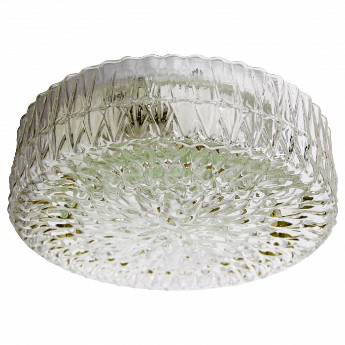 Фото Накладной светильник Arte Lamp Crystal A3420PL-1SS