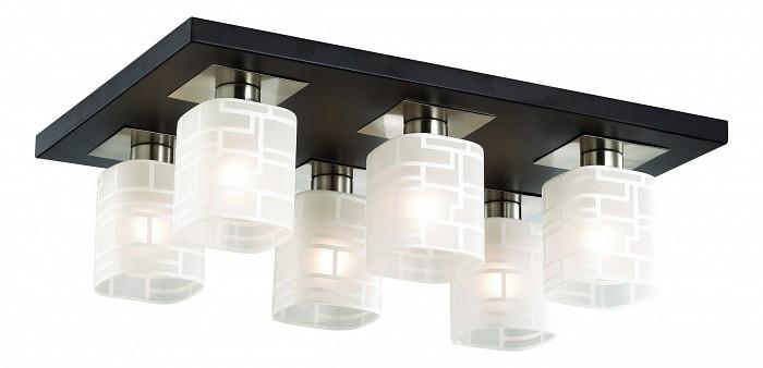 Фото Накладной светильник Odeon Light Campus 2615/6C