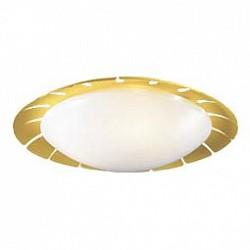 Накладной светильник Odeon LightКруглые<br>Артикул - OD_2753_3C,Бренд - Odeon Light (Италия),Коллекция - Zita,Гарантия, месяцы - 24,Высота, мм - 140,Диаметр, мм - 510,Тип лампы - компактная люминесцентная [КЛЛ] ИЛИсветодиодная [LED],Общее кол-во ламп - 3,Напряжение питания лампы, В - 220,Максимальная мощность лампы, Вт - 13,Лампы в комплекте - отсутствуют,Цвет плафонов и подвесок - белый,Тип поверхности плафонов - матовый,Материал плафонов и подвесок - акрил,Цвет арматуры - желтый,Тип поверхности арматуры - глянцевый,Материал арматуры - металл,Возможность подлючения диммера - нельзя,Тип цоколя лампы - E14,Класс электробезопасности - I,Общая мощность, Вт - 39,Степень пылевлагозащиты, IP - 20,Диапазон рабочих температур - комнатная температура<br>