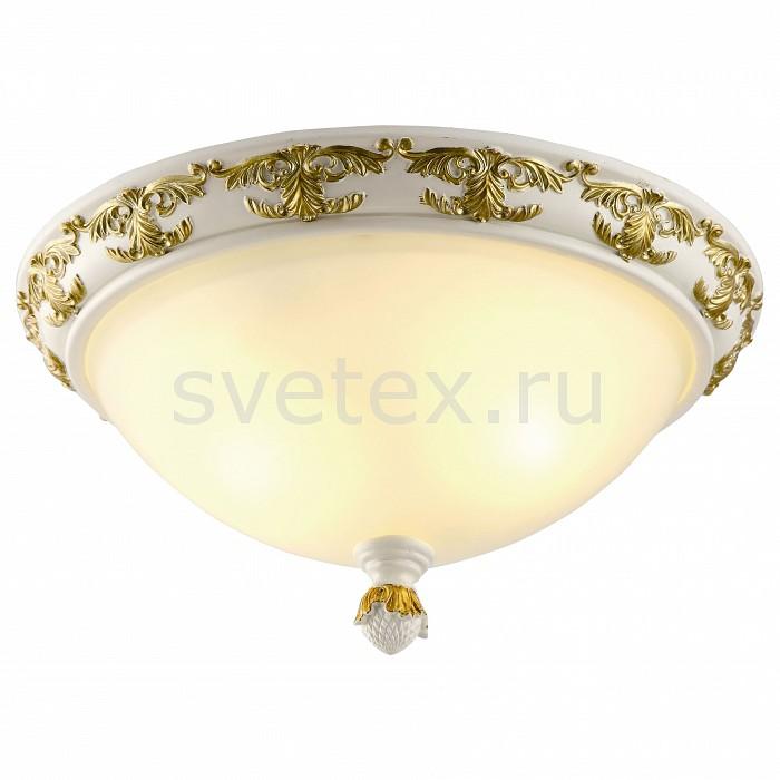 Фото Накладной светильник Arte Lamp Benessere A9570PL-2WG