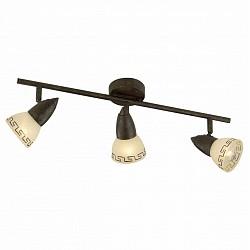 Спот Odeon LightС 3 лампами<br>Артикул - OD_2075_3W,Бренд - Odeon Light (Италия),Коллекция - Medeo,Гарантия, месяцы - 24,Время изготовления, дней - 1,Тип лампы - компактная люминесцентная [КЛЛ] ИЛИнакаливания ИЛИсветодиодная [LED],Общее кол-во ламп - 3,Напряжение питания лампы, В - 220,Максимальная мощность лампы, Вт - 40,Лампы в комплекте - отсутствуют,Цвет плафонов и подвесок - белый с коричневым орнаментом,Тип поверхности плафонов - матовый,Материал плафонов и подвесок - стекло,Цвет арматуры - коричневый,Тип поверхности арматуры - матовый,Материал арматуры - металл,Возможность подлючения диммера - можно, если установить лампу накаливания,Тип цоколя лампы - E14,Класс электробезопасности - I,Общая мощность, Вт - 120,Степень пылевлагозащиты, IP - 20,Диапазон рабочих температур - комнатная температура,Дополнительные параметры - поворотный светильник<br>