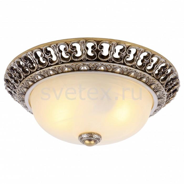 Фото Накладной светильник Arte Lamp Torta A7131PL-2SA