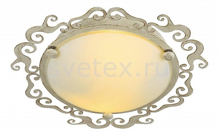 Фото Накладной светильник Arte Lamp Riccioli A1060PL-2WG