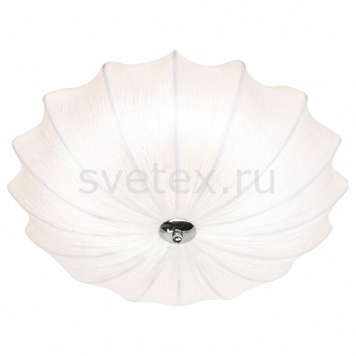 Фото Накладной светильник Arte Lamp Cocoon A6180PL-3WH