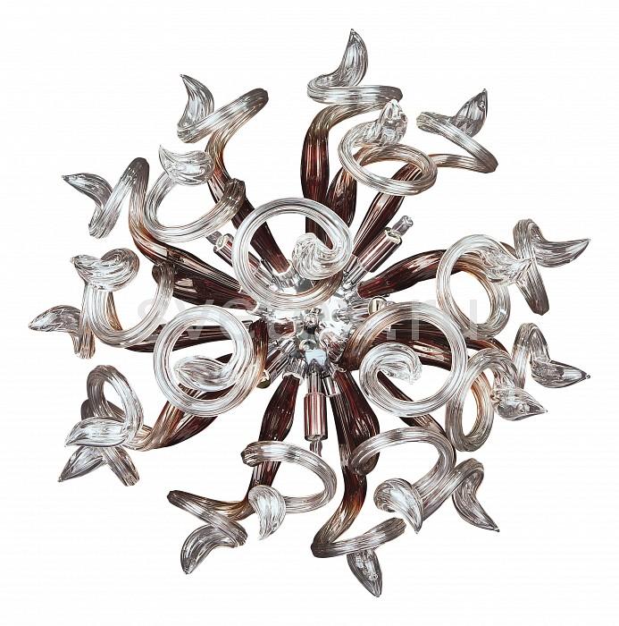 Накладной светильник LightstarКруглые<br>Артикул - LS_890658,Бренд - Lightstar (Италия),Коллекция - Medusa,Гарантия, месяцы - 24,Время изготовления, дней - 1,Выступ, мм - 270,Диаметр, мм - 500,Тип лампы - светодиодная [LED],Общее кол-во ламп - 5,Напряжение питания лампы, В - 220,Максимальная мощность лампы, Вт - 1,Лампы в комплекте - светодиодные [LED],Цвет плафонов и подвесок - кофейный, неокрашенный,Тип поверхности плафонов - прозрачный,Материал плафонов и подвесок - стекло,Цвет арматуры - хром,Тип поверхности арматуры - глянцевый,Материал арматуры - металл,Количество плафонов - 1,Возможность подлючения диммера - можно,Компоненты, входящие в комплект - блок питания,Экономичнее лампы накаливания - в 15 раз,Класс электробезопасности - I,Общая мощность, Вт - 5,Степень пылевлагозащиты, IP - 20,Диапазон рабочих температур - комнатная температура,Дополнительные параметры - светильник предназначен для использования со скрытой проводкой<br>