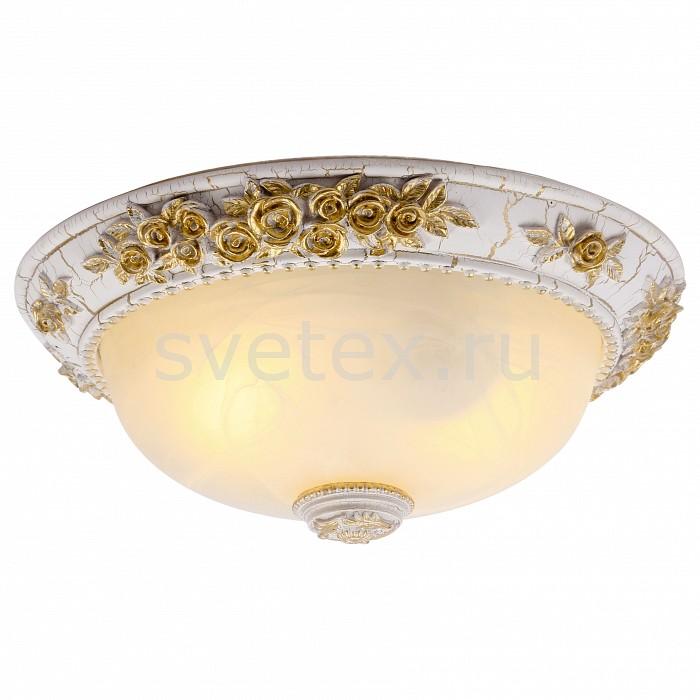Фото Накладной светильник Arte Lamp Torta A7101PL-2WG
