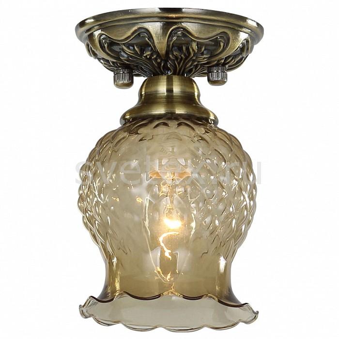 Фото Накладной светильник Favourite Parma 1386-1U