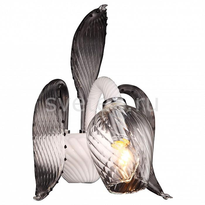 Фото Бра Arte Lamp Prima A9130AP-1WH