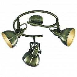 Спот Arte LampС 3 лампами<br>Артикул - AR_A5215PL-3AB,Бренд - Arte Lamp (Италия),Коллекция - Martin,Гарантия, месяцы - 24,Время изготовления, дней - 1,Диаметр, мм - 460,Размер упаковки, мм - 655x335x415,Тип лампы - компактная люминесцентная [КЛЛ] ИЛИнакаливания ИЛИсветодиодная [LED],Общее кол-во ламп - 3,Напряжение питания лампы, В - 220,Максимальная мощность лампы, Вт - 40,Лампы в комплекте - отсутствуют,Цвет плафонов и подвесок - бронза античная,Тип поверхности плафонов - глянцевый,Материал плафонов и подвесок - металл,Цвет арматуры - бронза античная,Тип поверхности арматуры - глянцевый,Материал арматуры - металл,Возможность подлючения диммера - можно, если установить лампу накаливания,Тип цоколя лампы - E14,Класс электробезопасности - I,Общая мощность, Вт - 120,Степень пылевлагозащиты, IP - 20,Диапазон рабочих температур - комнатная температура,Дополнительные параметры - поворотный светильник, способ крепления к потолку — на монтажной пластине<br>