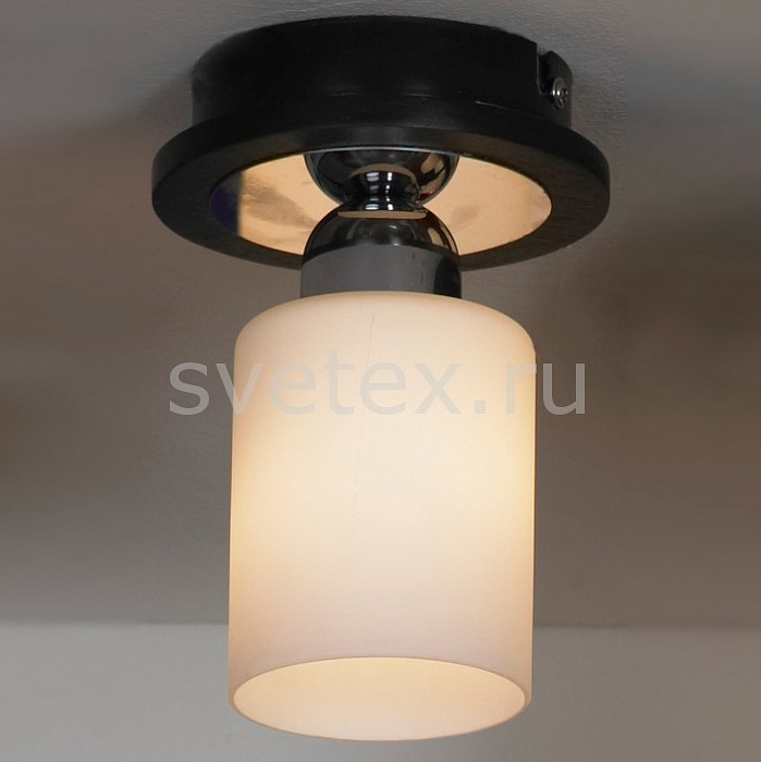 Фото Светильник на штанге Lussole Caprile LSF-6107-01