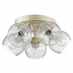 Спот LumionБолее 4 ламп<br>Артикул - LMN_3116_5CA,Бренд - Lumion (Италия),Коллекция - Clodina,Гарантия, месяцы - 24,Диаметр, мм - 420,Размер упаковки, мм - 170x375x250,Тип лампы - компактная люминесцентная [КЛЛ] ИЛИнакаливания ИЛИсветодиодная [LED],Общее кол-во ламп - 5,Напряжение питания лампы, В - 220,Максимальная мощность лампы, Вт - 40,Лампы в комплекте - отсутствуют,Цвет плафонов и подвесок - неокрашенный с рисунком,Тип поверхности плафонов - прозрачный,Материал плафонов и подвесок - стекло,Цвет арматуры - белый с золотой патиной,Тип поверхности арматуры - матовый,Материал арматуры - металл,Возможность подлючения диммера - можно, если установить лампу накаливания,Тип цоколя лампы - E14,Класс электробезопасности - I,Общая мощность, Вт - 200,Степень пылевлагозащиты, IP - 20,Диапазон рабочих температур - комнатная температура,Дополнительные параметры - способ крепления к потолку и стене - на монтажной пластине, поворотный светильник<br>