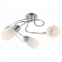 Потолочная люстра GloboНе более 4 ламп<br>Артикул - GB_54283-3,Бренд - Globo (Австрия),Коллекция - Bosporus,Гарантия, месяцы - 24,Высота, мм - 200,Диаметр, мм - 420,Тип лампы - компактная люминесцентная [КЛЛ] ИЛИнакаливания ИЛИсветодиодная [LED],Общее кол-во ламп - 3,Напряжение питания лампы, В - 220,Максимальная мощность лампы, Вт - 40,Лампы в комплекте - отсутствуют,Цвет плафонов и подвесок - белый с каймой,Тип поверхности плафонов - матовый,Материал плафонов и подвесок - стекло,Цвет арматуры - никель,Тип поверхности арматуры - сатин,Материал арматуры - металл,Количество плафонов - 3,Возможность подлючения диммера - можно, если установить лампу накаливания,Тип цоколя лампы - E14,Класс электробезопасности - I,Общая мощность, Вт - 120,Степень пылевлагозащиты, IP - 20,Диапазон рабочих температур - комнатная температура,Дополнительные параметры - способ крепления светильника к потолку - на монтажной пластине<br>