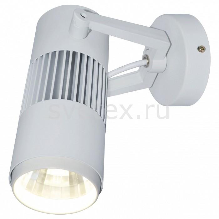 Фото Светильник на штанге Arte Lamp Track Lights A6520AP-1WH
