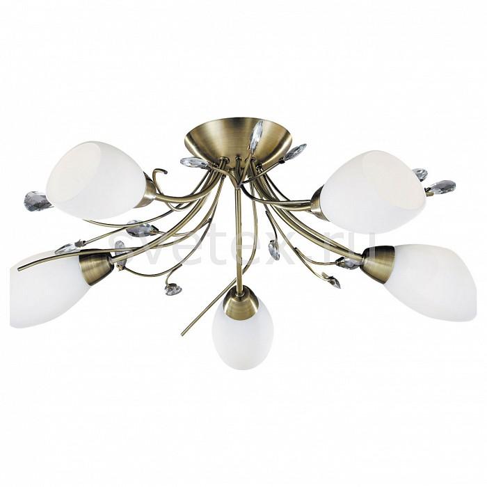 Фото Потолочная люстра Arte Lamp Gardenia A2766PL-5AB