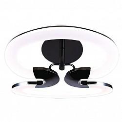 Накладной светильник IDLampСветодиодные<br>Артикул - ID_410_2PF-LEDWetasphalt,Бренд - IDLamp (Италия),Коллекция - Gala,Гарантия, месяцы - 24,Высота, мм - 270,Тип лампы - светодиодная [LED],Общее кол-во ламп - 2,Напряжение питания лампы, В - 220,Максимальная мощность лампы, Вт - 40,Лампы в комплекте - светодиодные [LED],Цвет плафонов и подвесок - белый,Тип поверхности плафонов - матовый,Материал плафонов и подвесок - акрил,Цвет арматуры - черный,Тип поверхности арматуры - матовый,Материал арматуры - металл,Возможность подлючения диммера - нельзя,Класс электробезопасности - I,Общая мощность, Вт - 80,Степень пылевлагозащиты, IP - 20,Диапазон рабочих температур - комнатная температура,Дополнительные параметры - способ крепления светильника к потолку - на монтажной пластине<br>